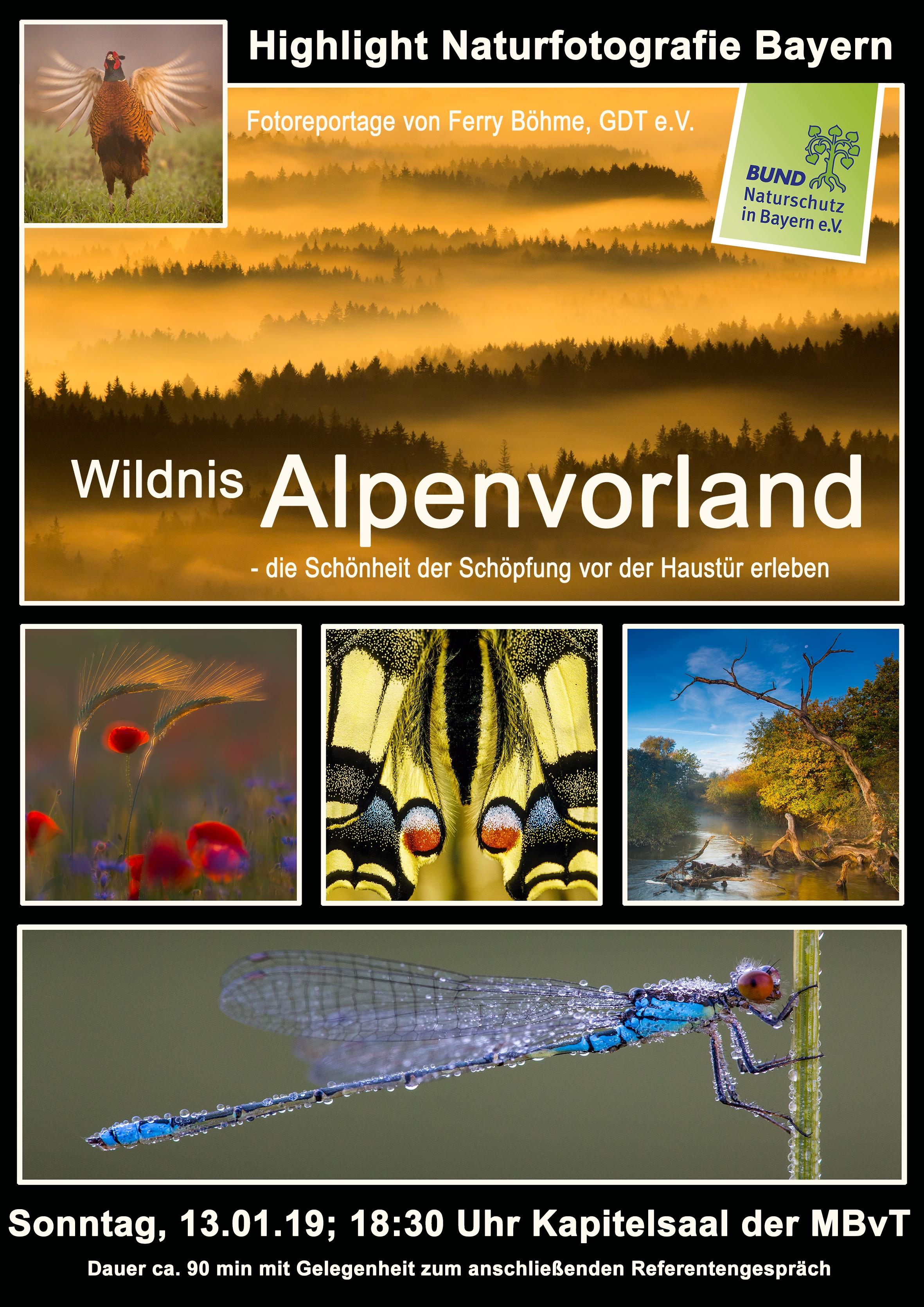 2019 Wildnis Alpenvorland Tutzing